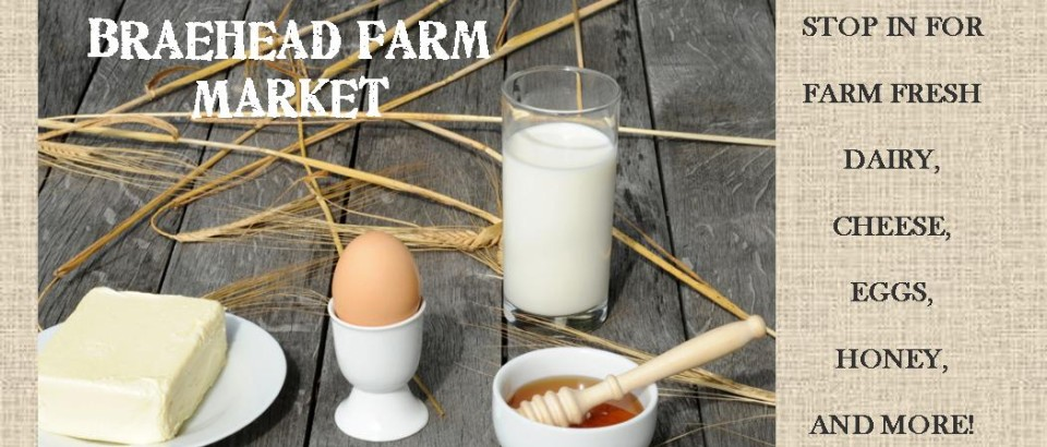 Braehead farm winter market