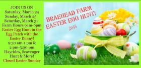 Easter+bunny+at+farm for website 2018